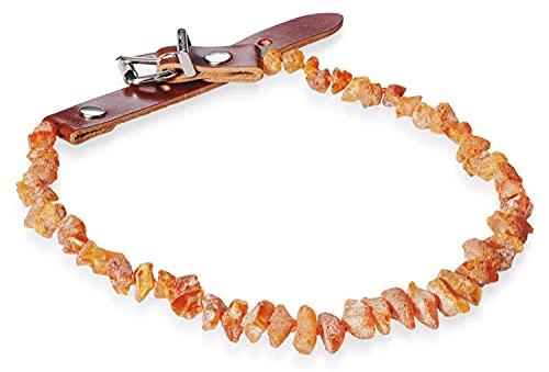 PETGARD Bernsteinhalsband Bernsteinkette mit Lederverschluss für Hunde + Katzen 31-35 cm