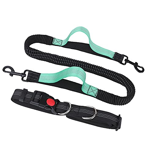 BIGLUFU Joggingleine Hunde,Verstellbarem Elastische Sportleine für Mittelgroße und Klein Hunde, Freihändig Joggen Laufen Radfahren Wandern Reflektierende Nähte für Hunde, schwarz