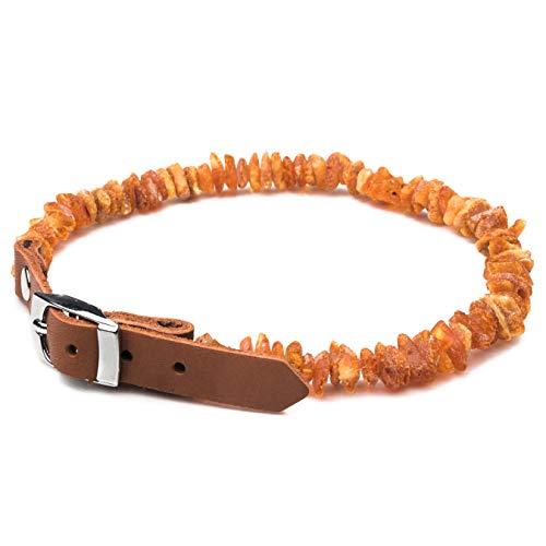 Echtes Bernsteinhalsband für Hunde. Natürlicher Schutz für Ihr Haustier