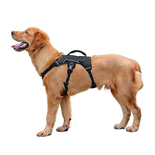 PETLOFT Hundegeschirr, Verstellbar Geschirr für Kleine Mittlere Hunde Brustgeschirr, Weiche Textur Reflektierende Dog Harness mit Edelstahlringen, No-Pull & Einfache Steuerung (M, Schwarz)