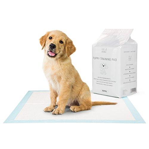 EVERANIMALS 50 Welpen Trainingsunterlagen - saugstarke Hunde-Pads, Hundeklo, Welpenunterlage, Welpentoilette für Zuhause