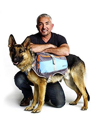 Cesar Millan Dog Backpack™ - Hunderucksack des Hundeflüsterers Cesar Millan™