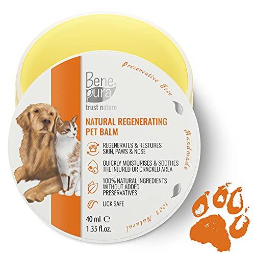 Bene Pura Trust Nature 100% Natürlicher Regenerierender Haustier Balsam - Für Pfoten, Nase und Haut - Für Hunde & Katzen
