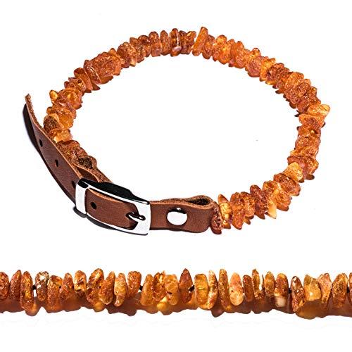 Bernsteinkette für Hunde und Katzen mit Lederschließe, natürliches flohzeckenabwehrmittel. Bernsteinhalsband von AmberNeck (35-40)